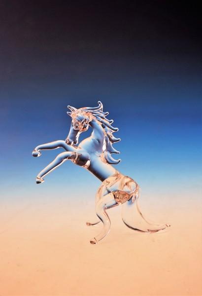 Pferd stehend
