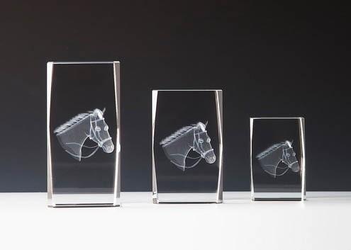 """Kristallblock mit 3 D Gravur """" Reiten """""""