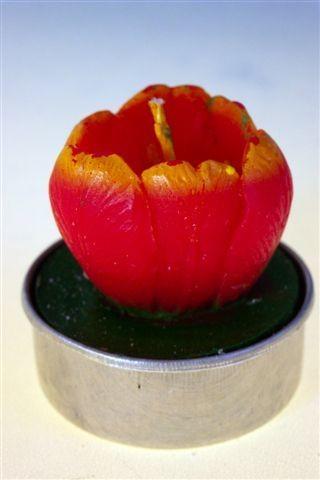 Teelicht Tulpe