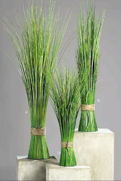 Deko-Gräser