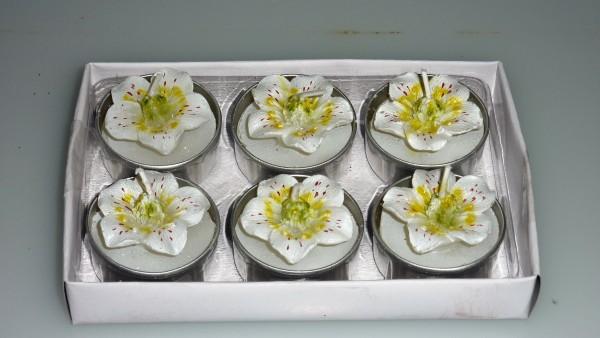 Teelicht Blumen weiß-gelb 6 tlg.